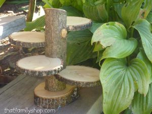 wooden dessert tree