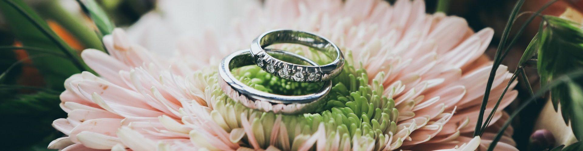 rings on flower