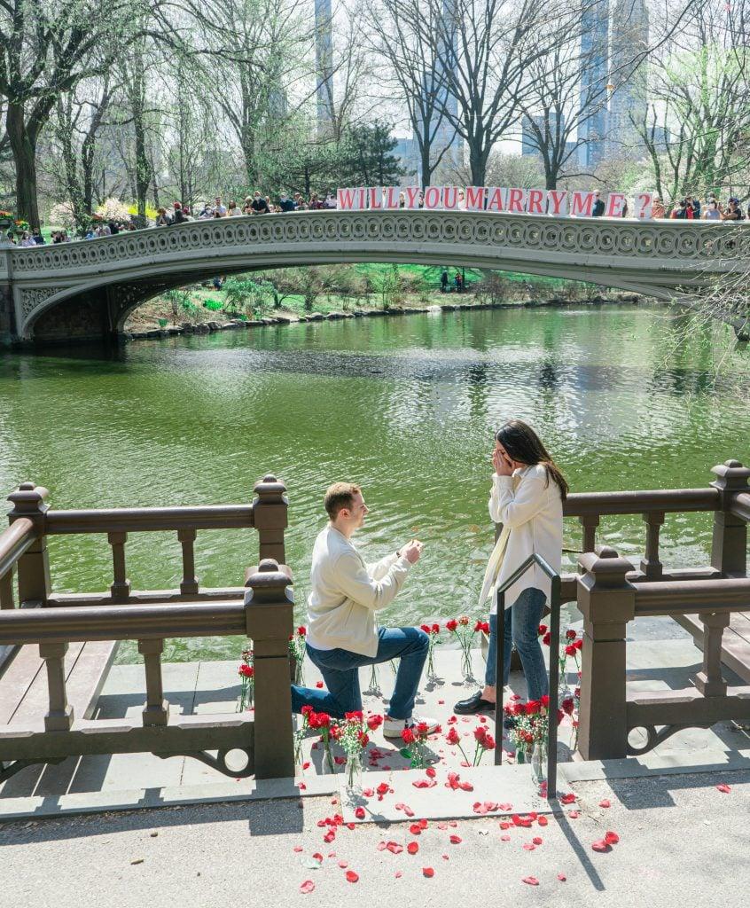 romantic wedding proposal at park