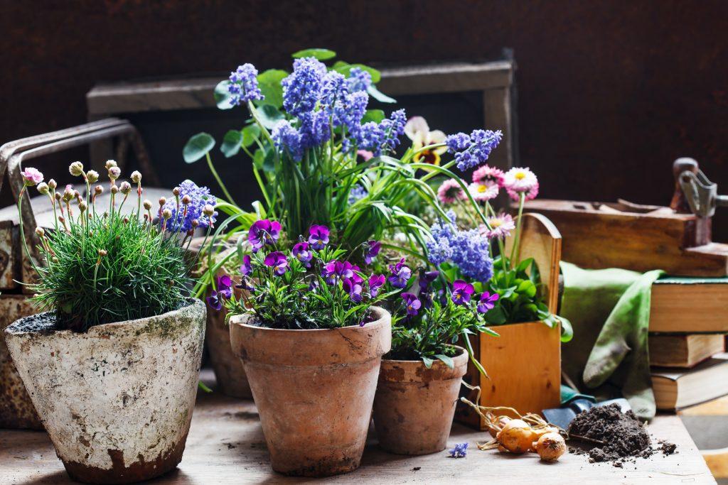 clay pots at a garden wedding